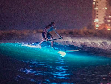 Paddle-in-cartagena